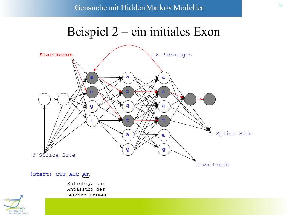 Beispiel 2 – ein initiales Exon