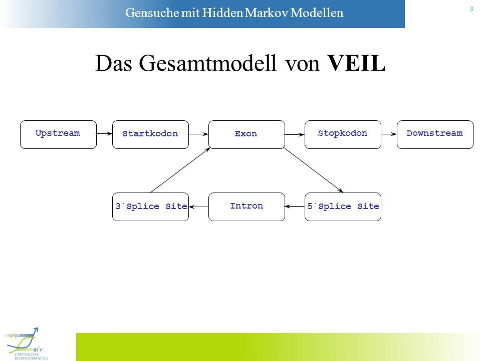 Das Gesamtmodell von VEIL