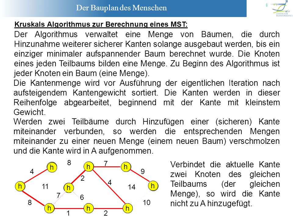 Kruskals Algorithmus zur Berechnung eines MST: