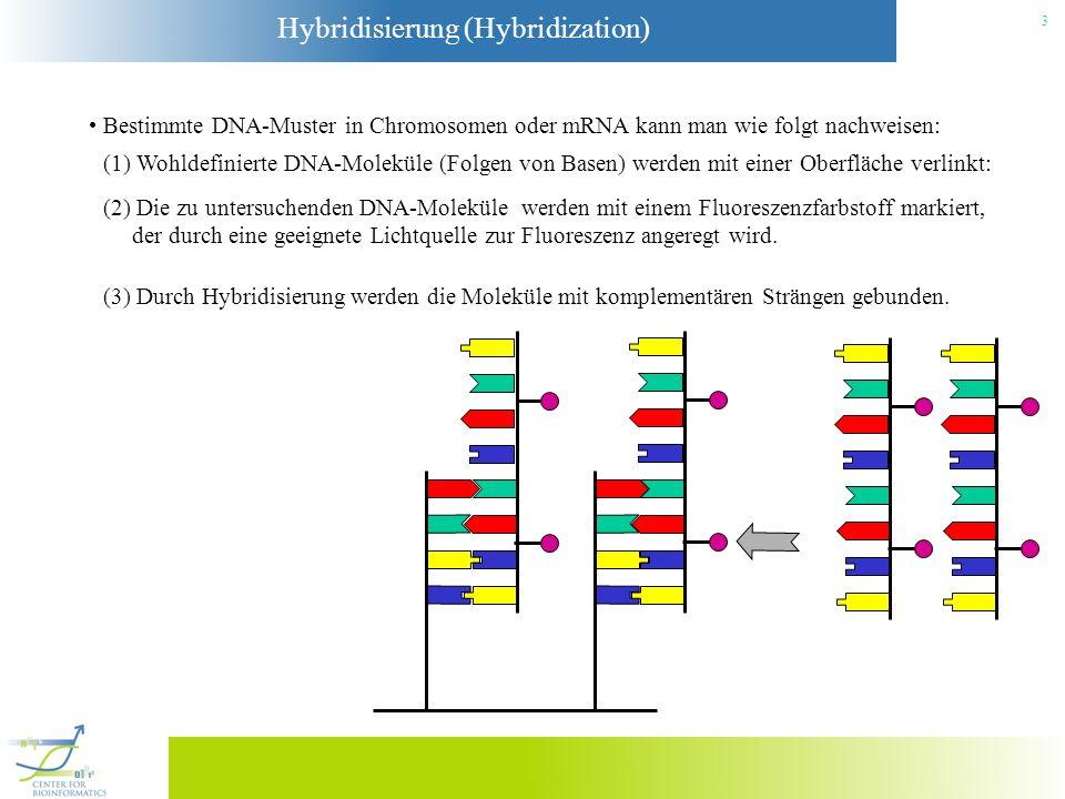 Bestimmte DNA-Muster in Chromosomen oder mRNA kann man wie folgt nachweisen: