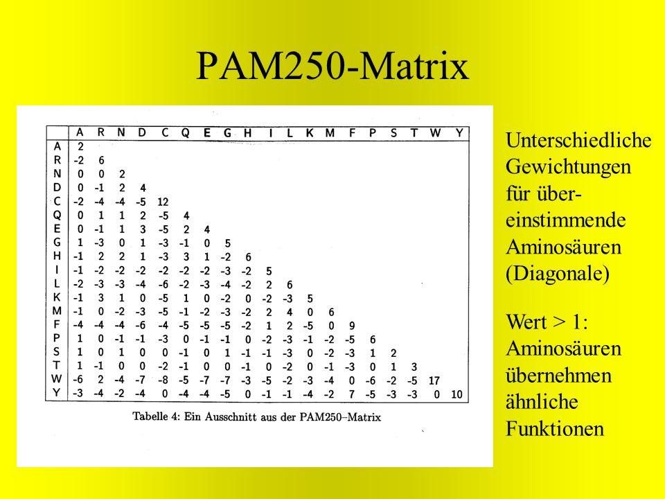 PAM250-MatrixUnterschiedliche Gewichtungen für über-einstimmende Aminosäuren (Diagonale) Wert > 1: Aminosäuren übernehmen ähnliche Funktionen.