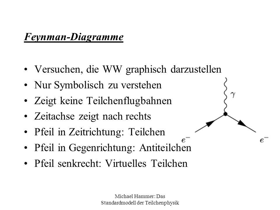 Michael Hammer: Das Standardmodell der Teilchenphysik