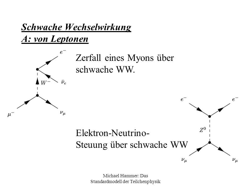 Schwache Wechselwirkung A: von Leptonen