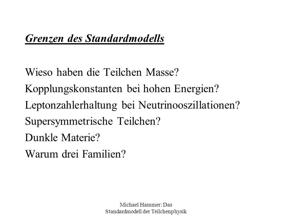 Grenzen des Standardmodells