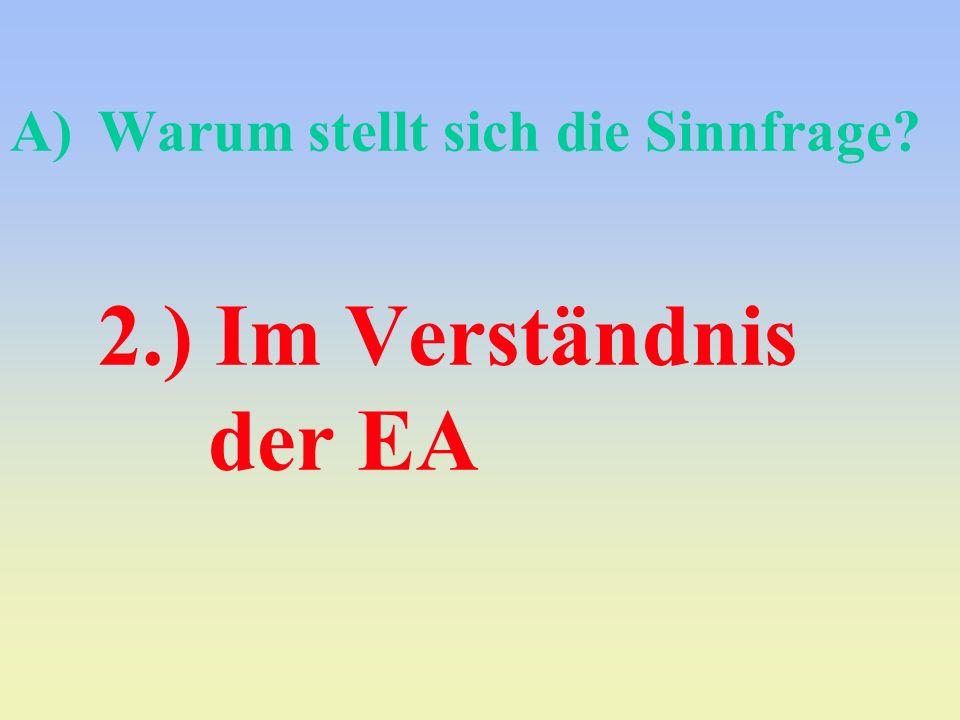 Warum stellt sich die Sinnfrage 2.) Im Verständnis der EA