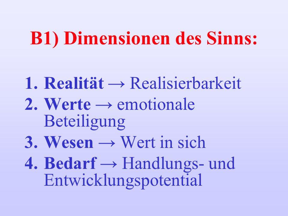 B1) Dimensionen des Sinns: