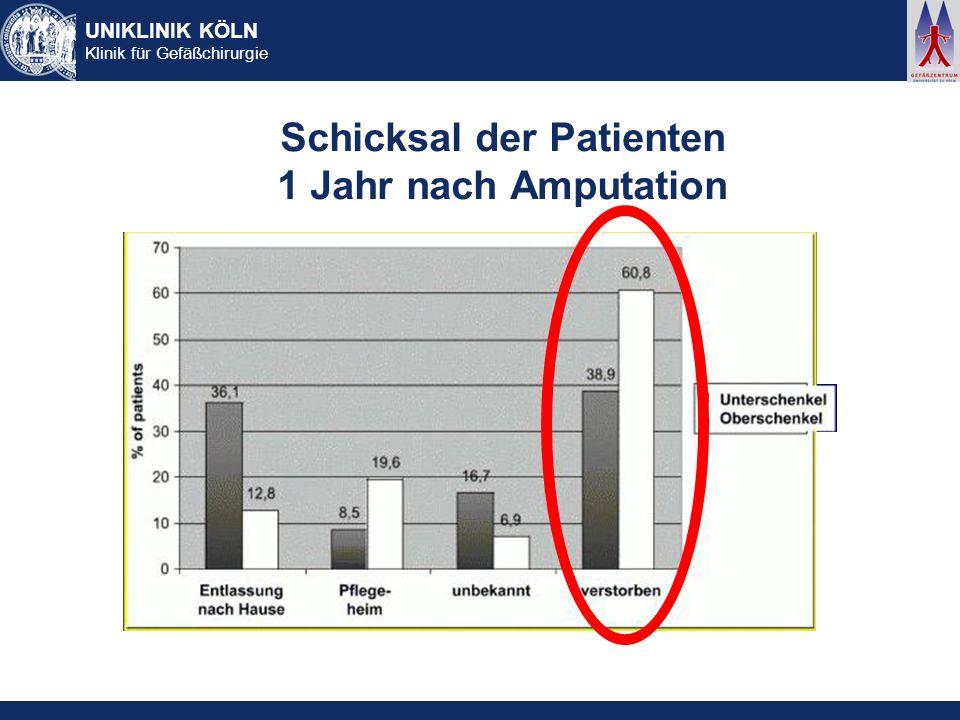 Schicksal der Patienten 1 Jahr nach Amputation