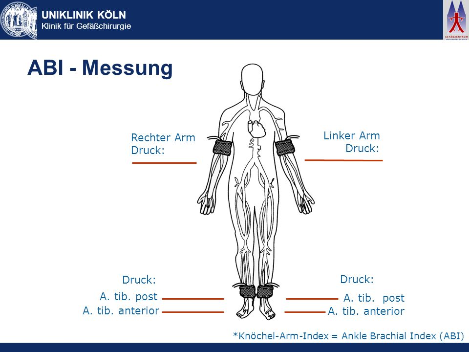 ABI - Messung Linker Arm Rechter Arm Druck: Druck: Druck: Druck: