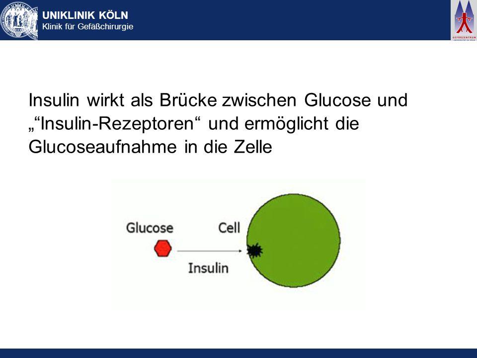 """Insulin wirkt als Brücke zwischen Glucose und """" Insulin-Rezeptoren und ermöglicht die Glucoseaufnahme in die Zelle"""