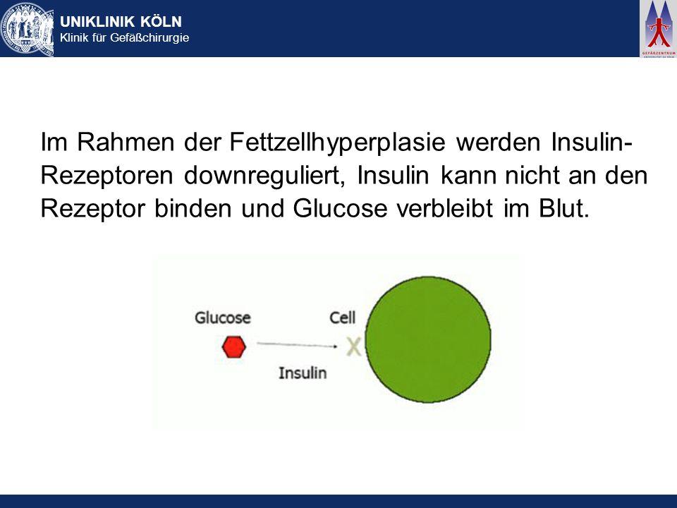 Im Rahmen der Fettzellhyperplasie werden Insulin-Rezeptoren downreguliert, Insulin kann nicht an den Rezeptor binden und Glucose verbleibt im Blut.