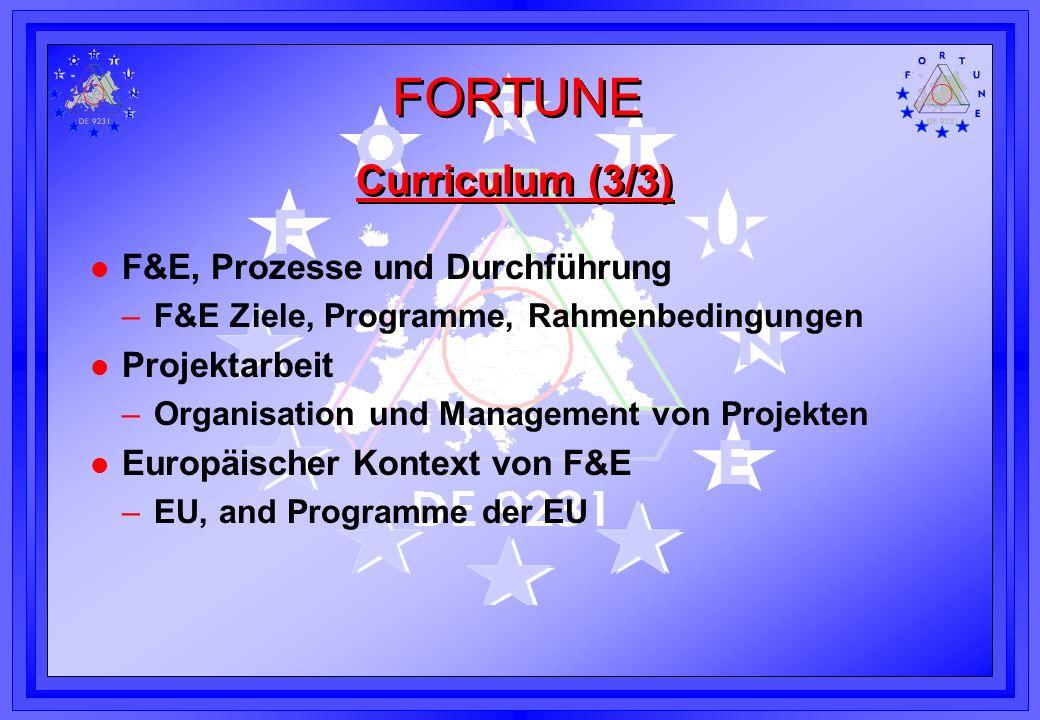 Curriculum (3/3) F&E, Prozesse und Durchführung Projektarbeit