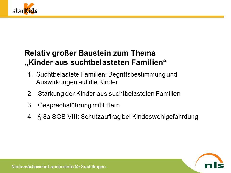 """Relativ großer Baustein zum Thema """"Kinder aus suchtbelasteten Familien"""