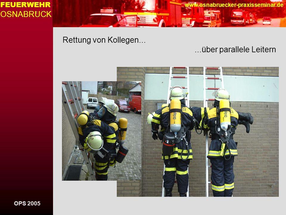 Rettung von Kollegen... ...über parallele Leitern