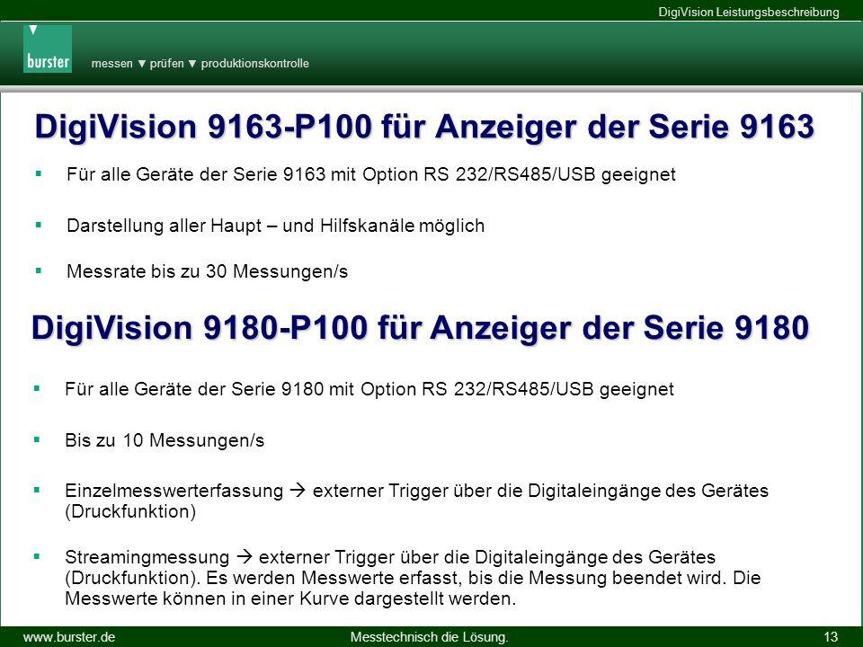 DigiVision 9163-P100 für Anzeiger der Serie 9163