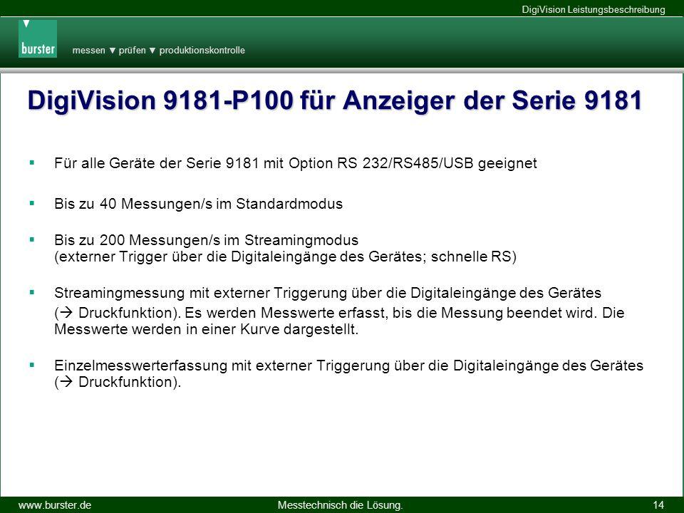 DigiVision 9181-P100 für Anzeiger der Serie 9181