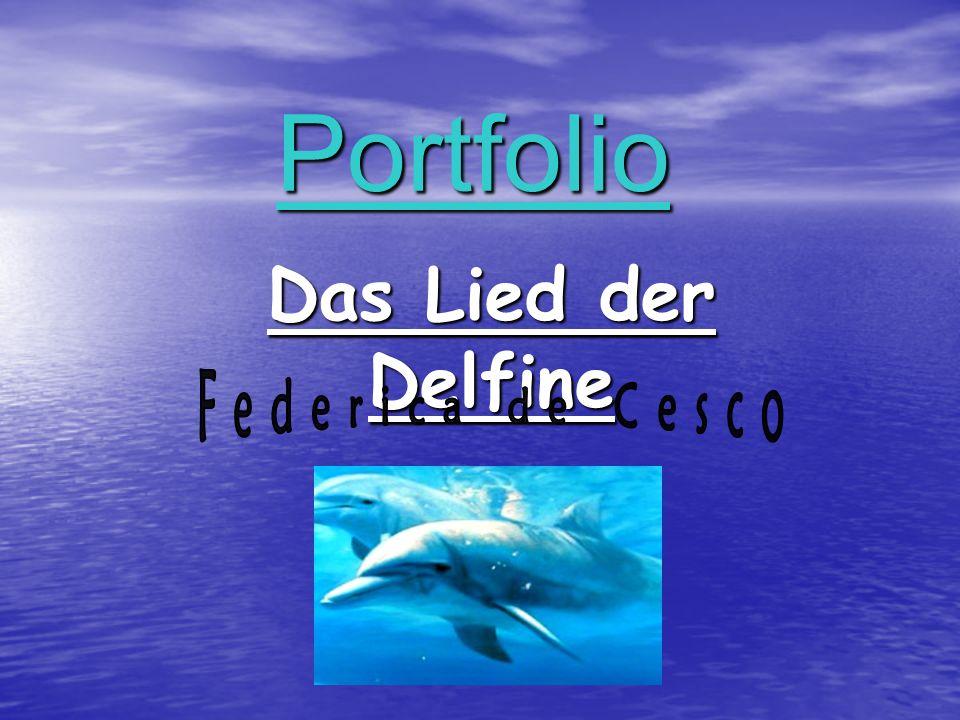 Portfolio Das Lied der Delfine Federica de Cesco