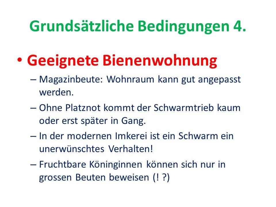 Grundsätzliche Bedingungen 4.