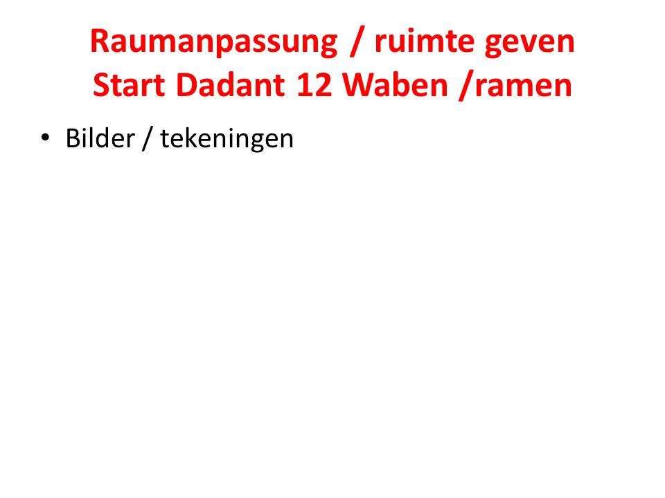 Raumanpassung / ruimte geven Start Dadant 12 Waben /ramen