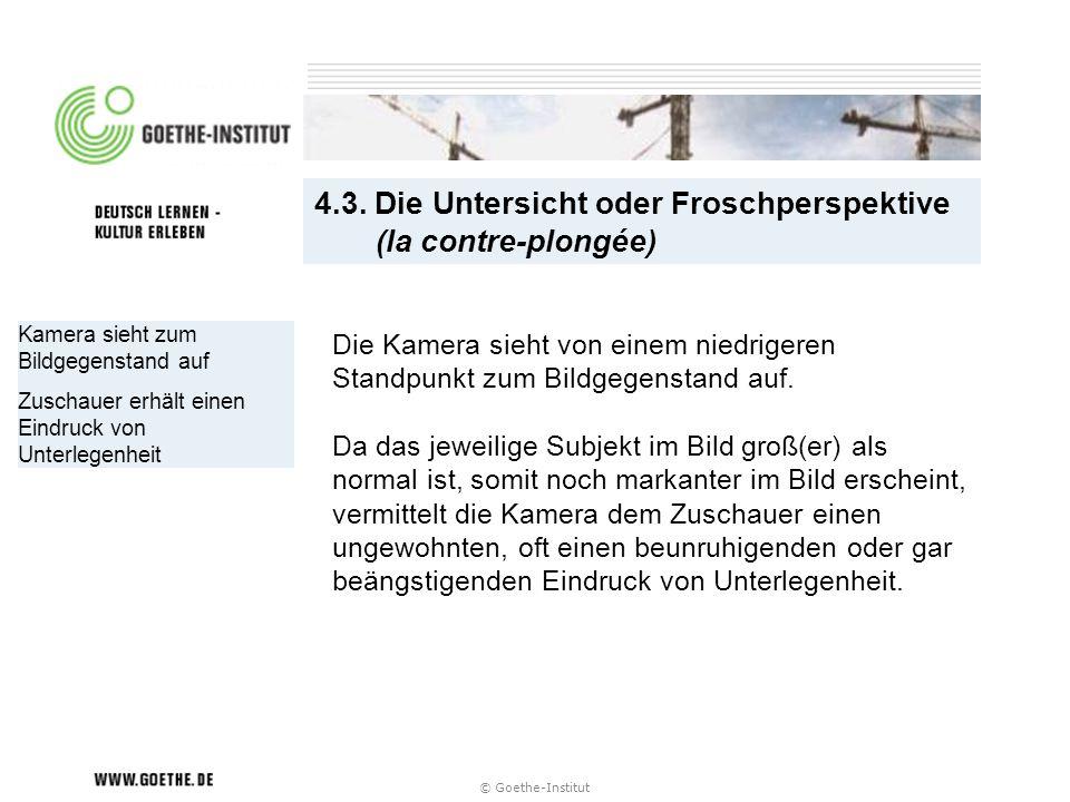 4.3. Die Untersicht oder Froschperspektive (la contre-plongée)