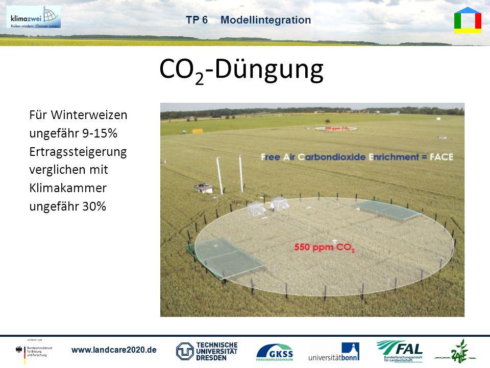 CO2-Düngung Für Winterweizen ungefähr 9-15% Ertragssteigerung verglichen mit Klimakammer ungefähr 30%