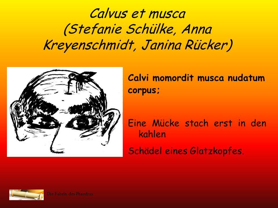 Calvus et musca (Stefanie Schülke, Anna Kreyenschmidt, Janina Rücker)