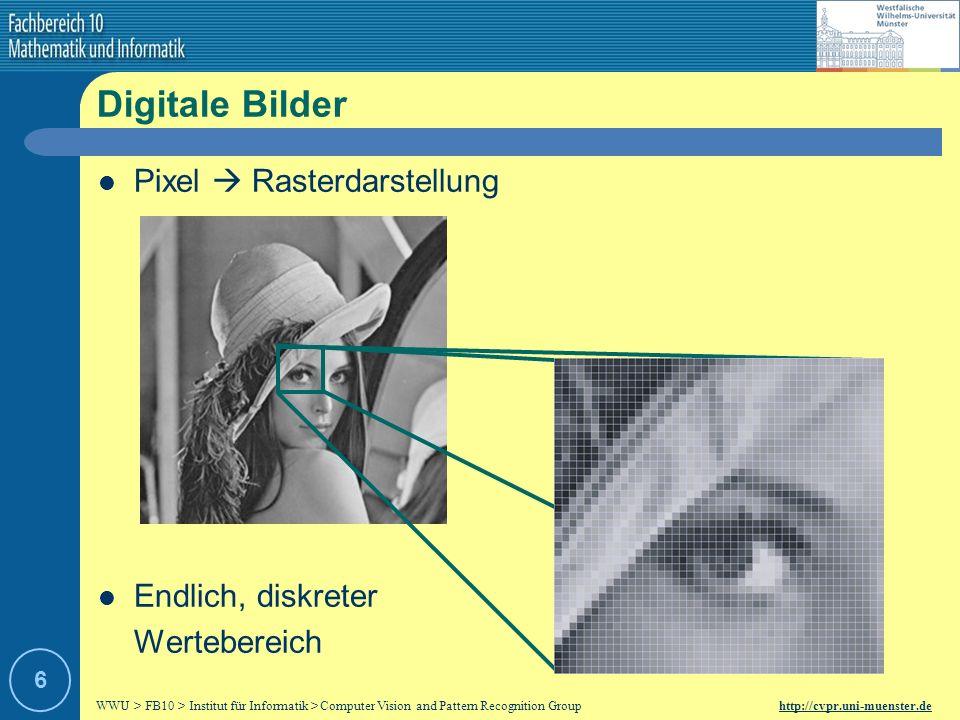 Digitale Bilder Pixel  Rasterdarstellung Endlich, diskreter