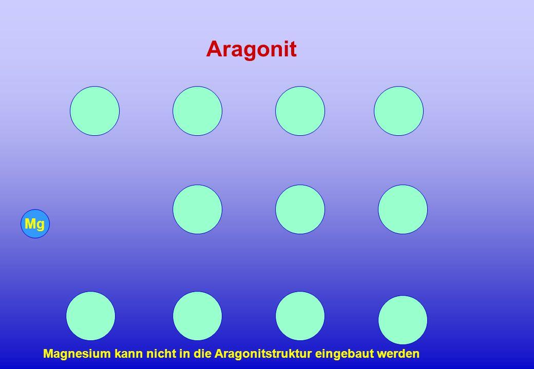 Aragonit Mg Magnesium kann nicht in die Aragonitstruktur eingebaut werden