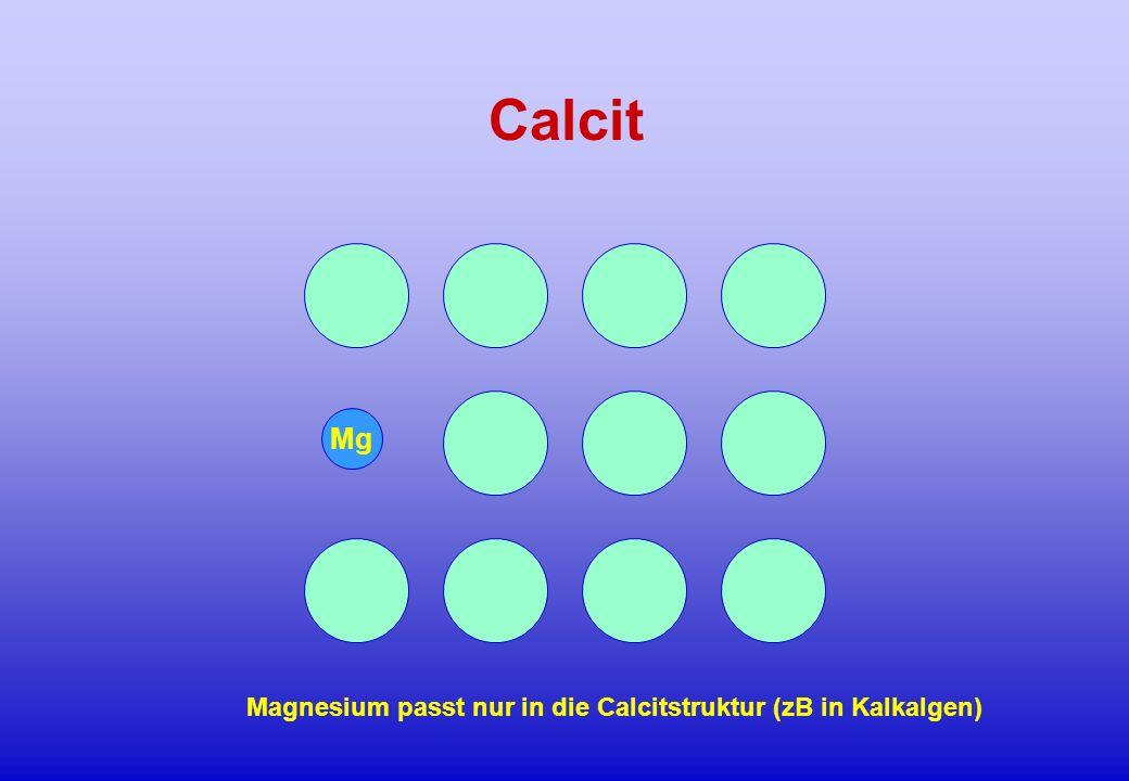Calcit Mg Magnesium passt nur in die Calcitstruktur (zB in Kalkalgen)