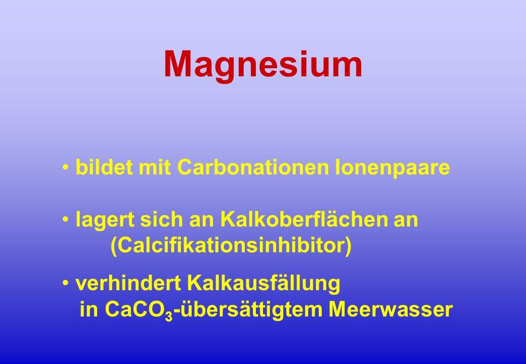 Magnesium bildet mit Carbonationen Ionenpaare