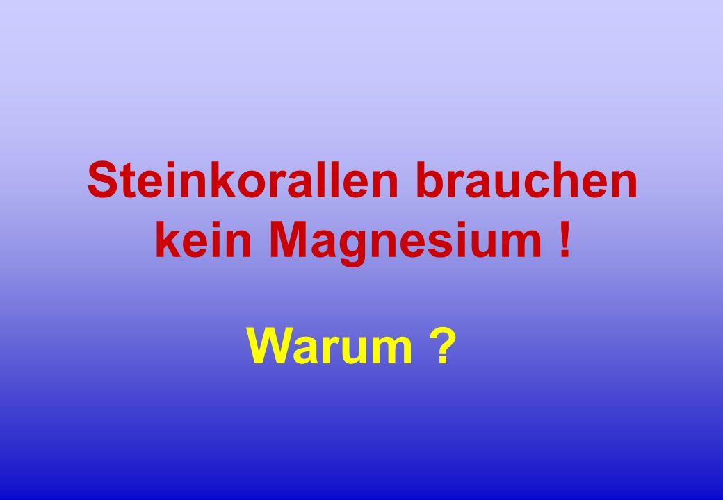 Steinkorallen brauchen kein Magnesium !