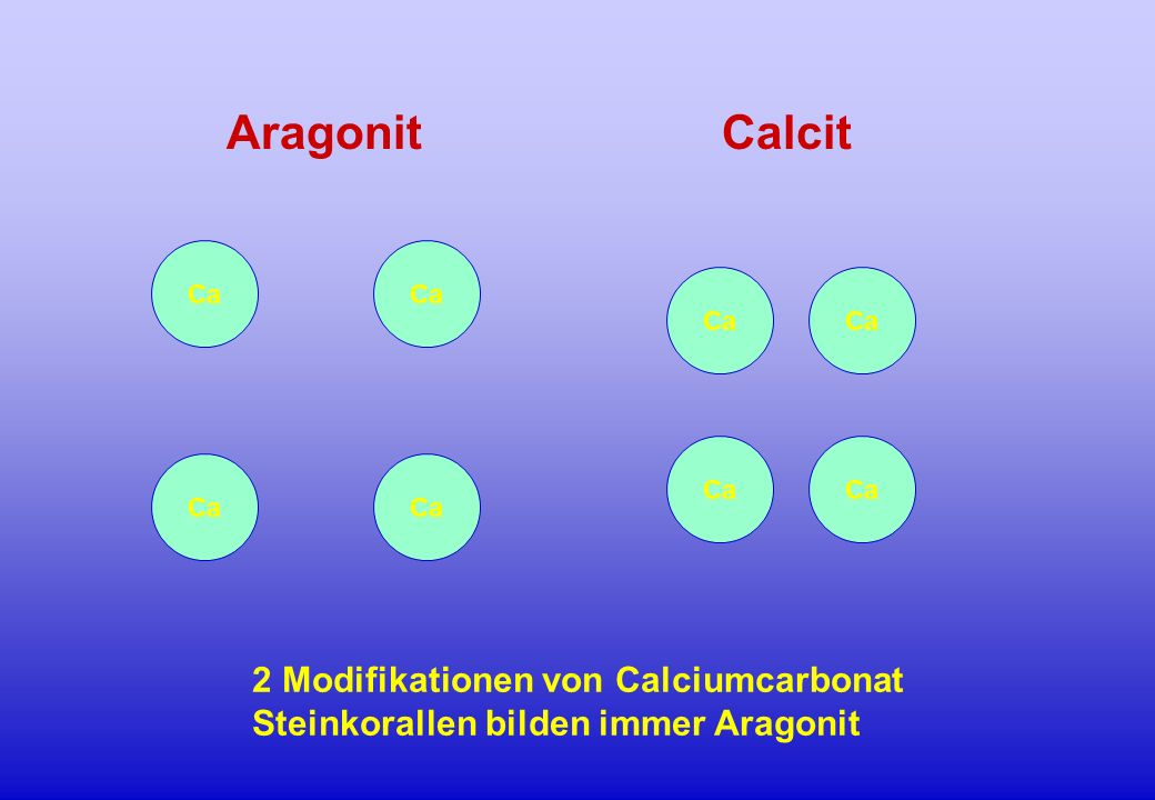 Aragonit Calcit 2 Modifikationen von Calciumcarbonat