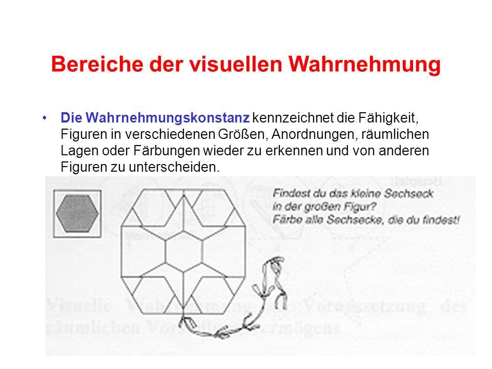 Bereiche der visuellen Wahrnehmung
