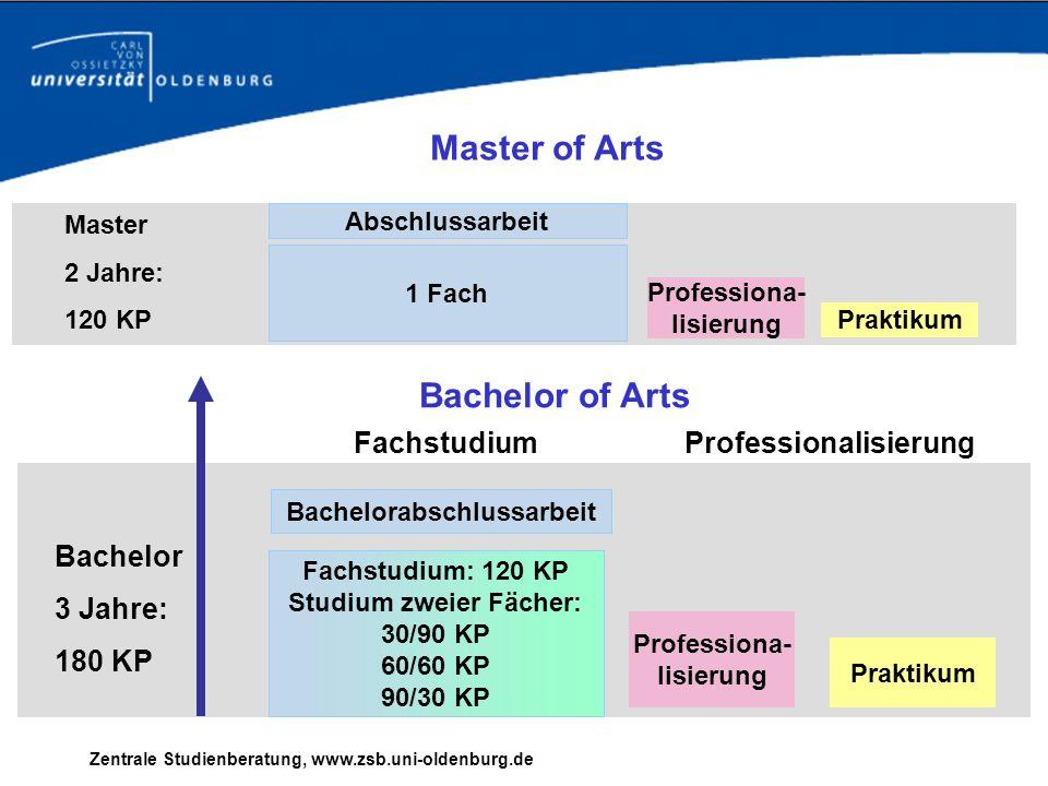 Professionalisierung Bachelorabschlussarbeit Studium zweier Fächer: