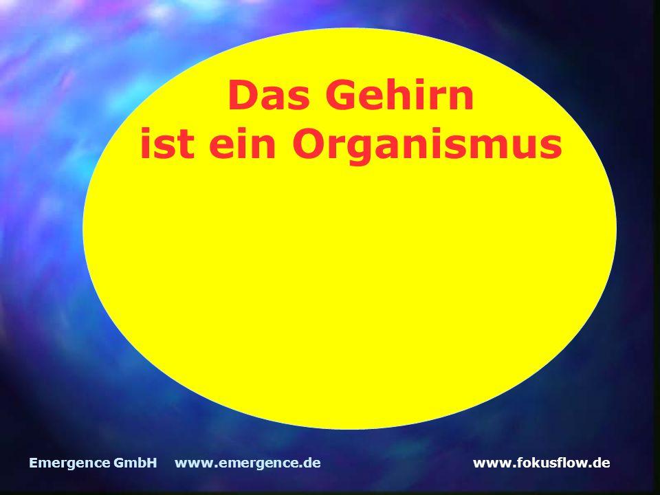 Das Gehirn ist ein Organismus