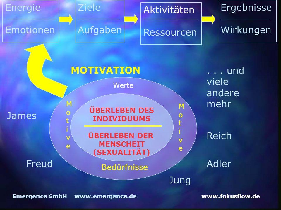 Energie Emotionen Ziele Aufgaben Ergebnisse Wirkungen Aktivitäten
