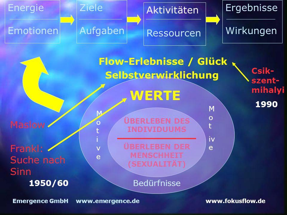 WERTE Energie Emotionen Ziele Aufgaben Ergebnisse Wirkungen