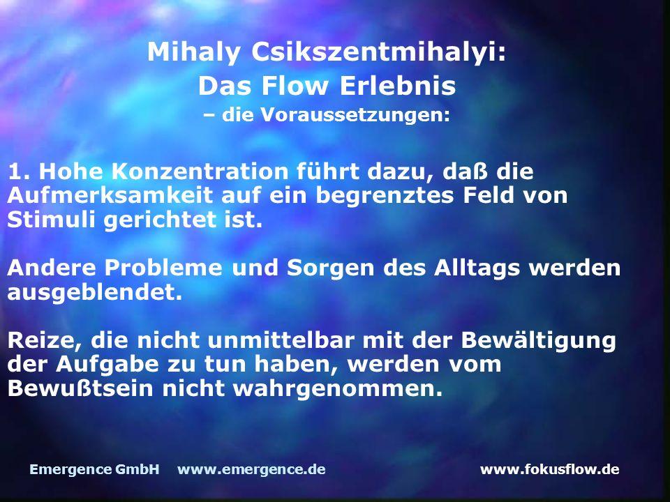 Mihaly Csikszentmihalyi: – die Voraussetzungen: