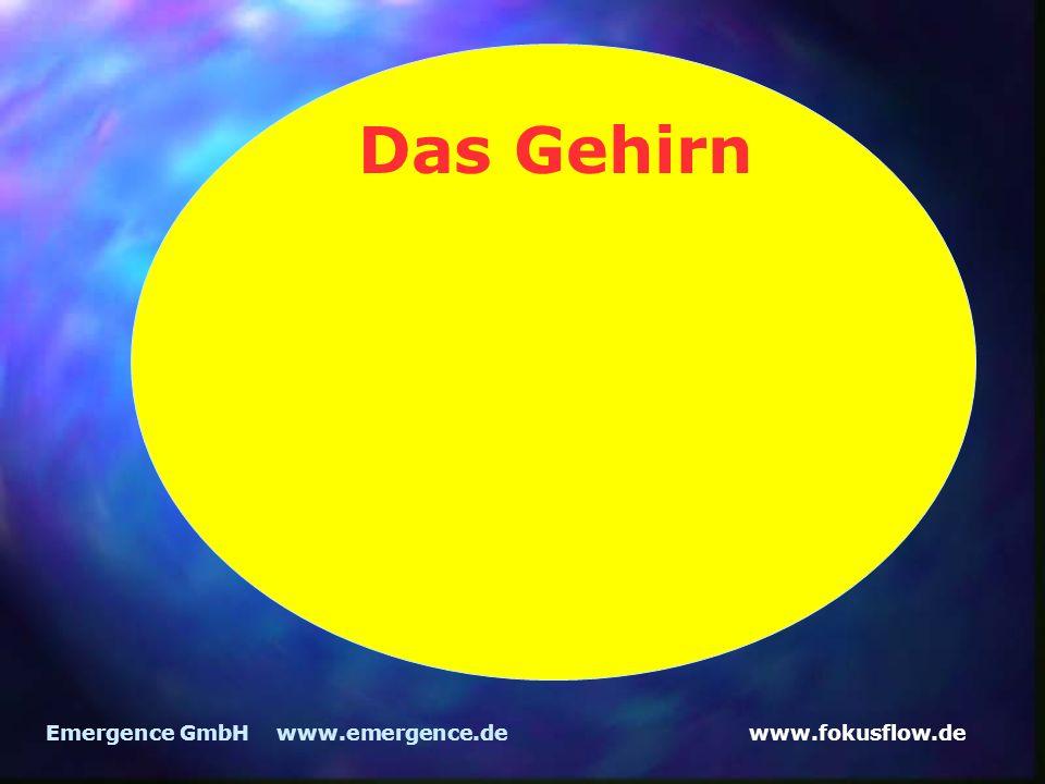 Das Gehirn Emergence GmbH www.emergence.de
