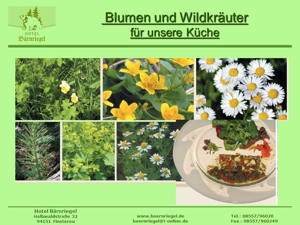 Blumen und Wildkräuter für unsere Küche
