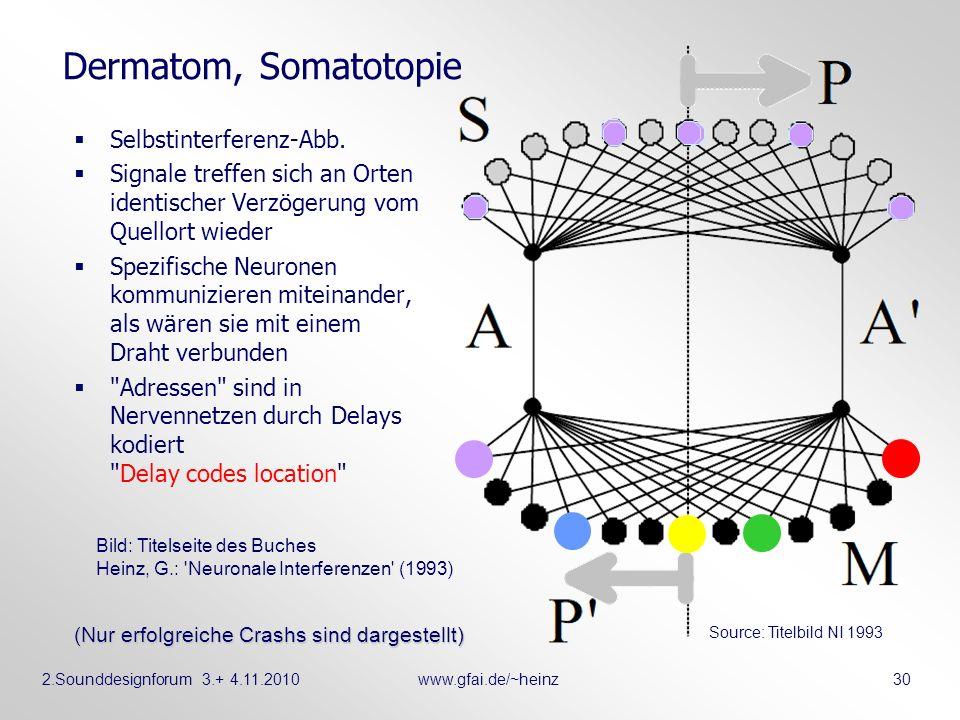 Dermatom, Somatotopie Selbstinterferenz-Abb.