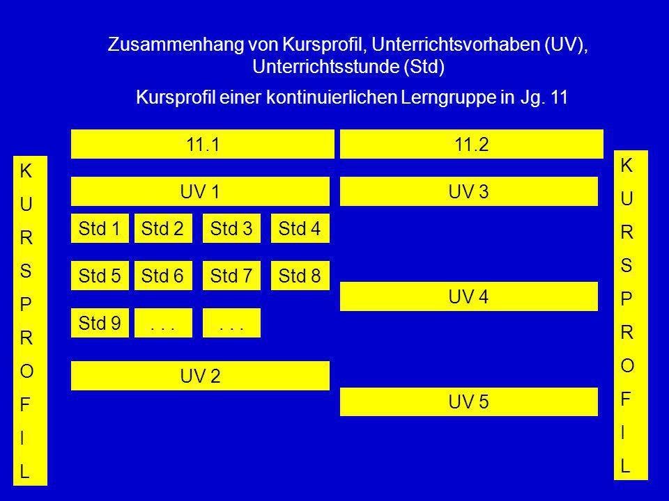 Kursprofil einer kontinuierlichen Lerngruppe in Jg. 11