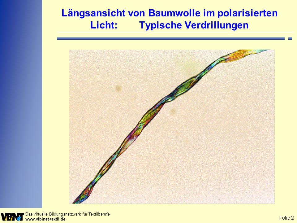 Längsansicht von Baumwolle im polarisierten Licht: Typische Verdrillungen
