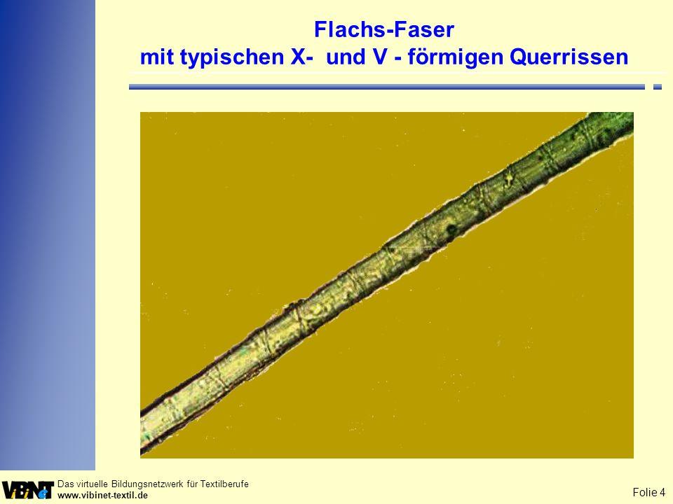 Flachs-Faser mit typischen X- und V - förmigen Querrissen