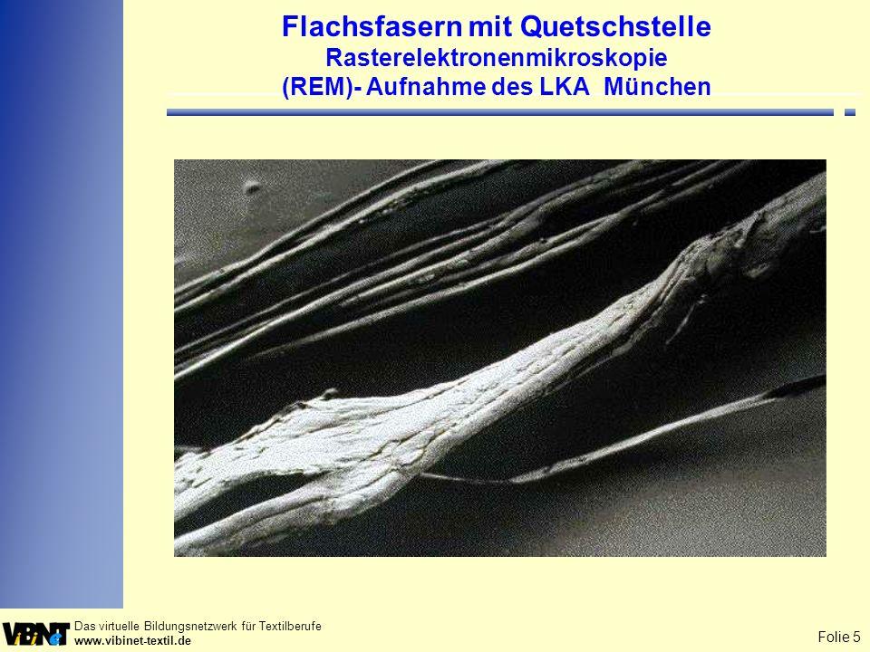 Flachsfasern mit Quetschstelle Rasterelektronenmikroskopie (REM)- Aufnahme des LKA München