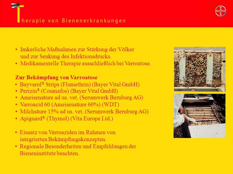 Therapie von Bienenerkrankungen
