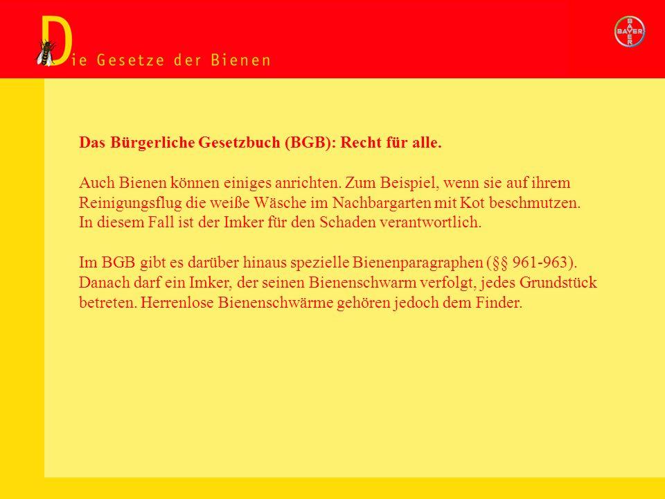 Das Bürgerliche Gesetzbuch (BGB): Recht für alle.