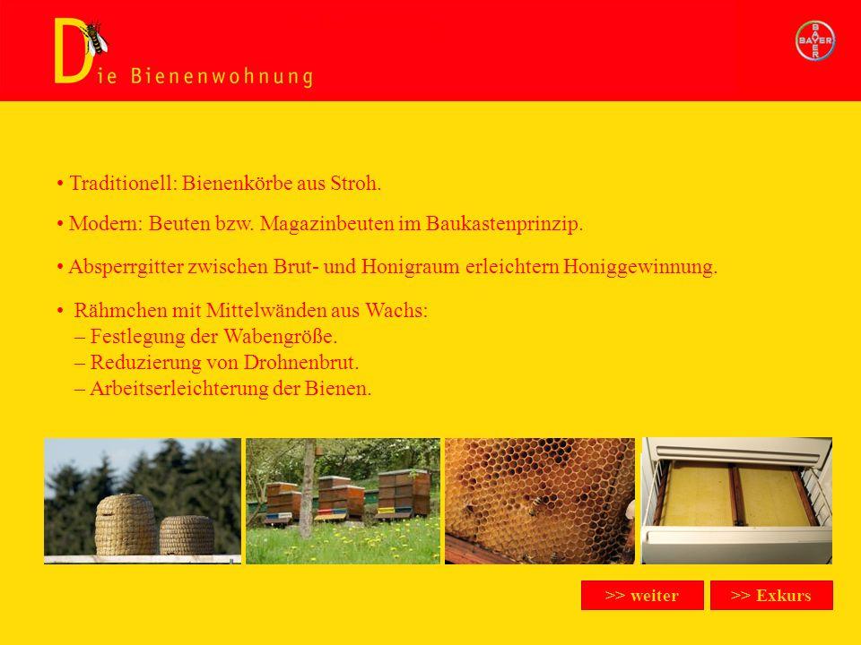 Traditionell: Bienenkörbe aus Stroh.