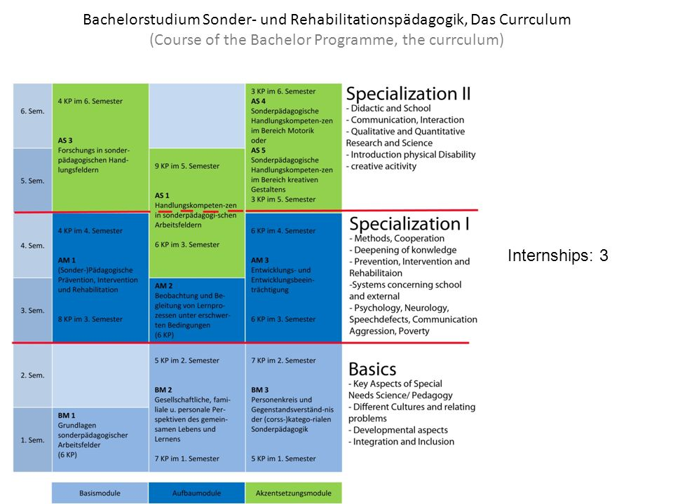 Bachelorstudium Sonder- und Rehabilitationspädagogik, Das Currculum (Course of the Bachelor Programme, the currculum)