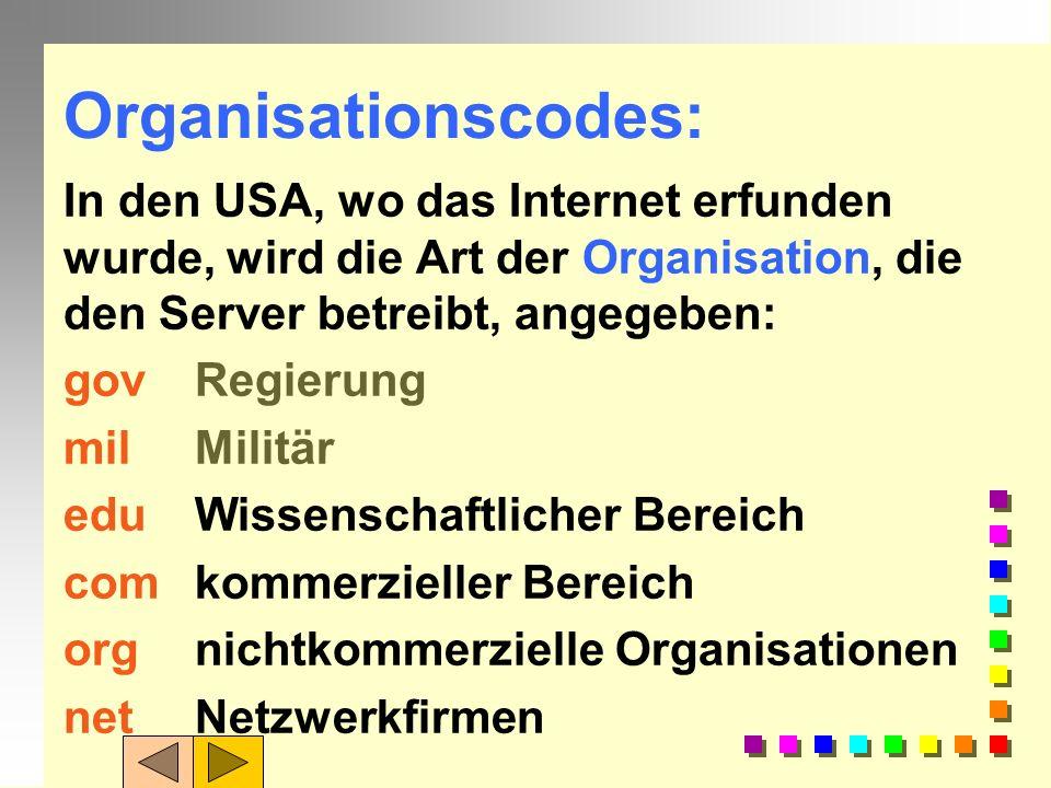 Organisationscodes:In den USA, wo das Internet erfunden wurde, wird die Art der Organisation, die den Server betreibt, angegeben: