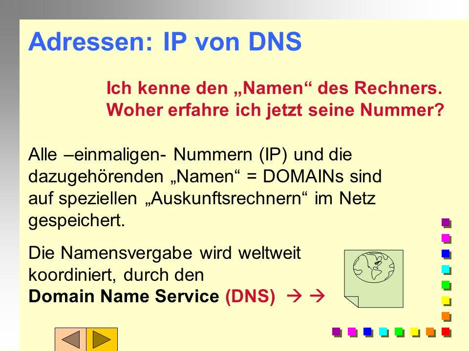 """Adressen: IP von DNS Ich kenne den """"Namen des Rechners."""